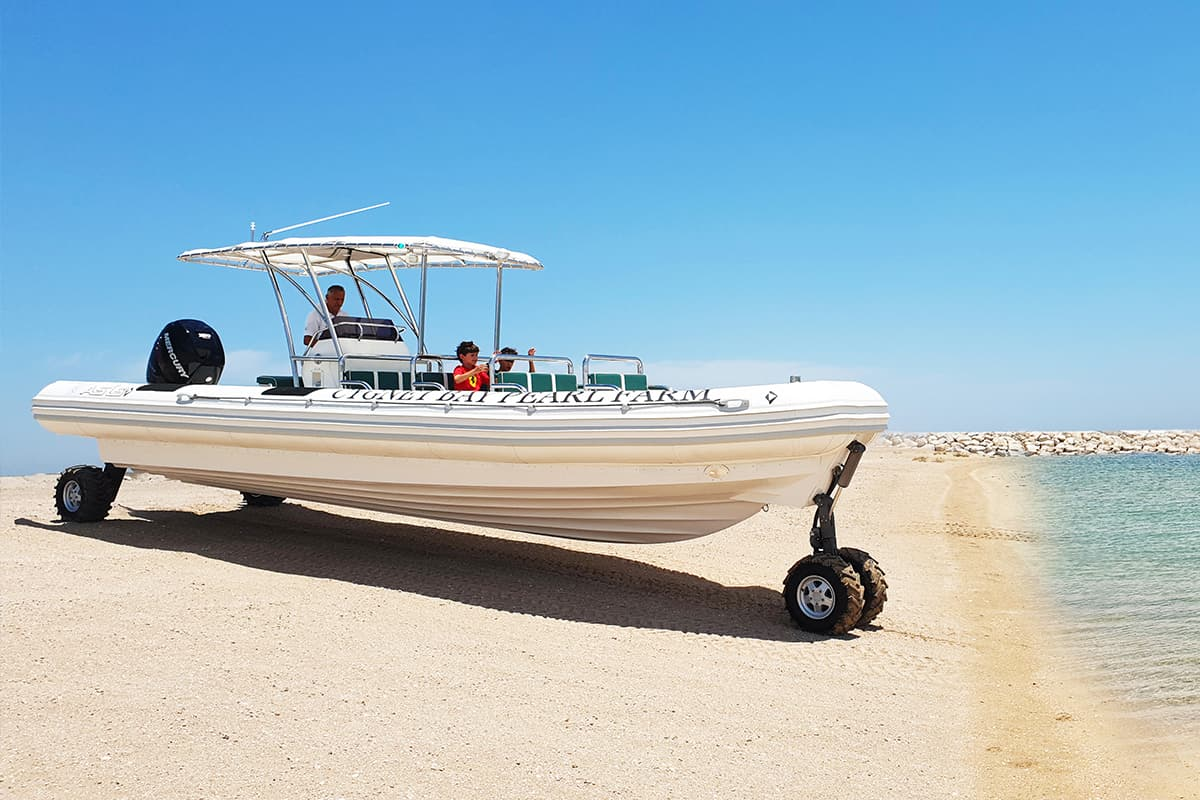 amphibious boat for transport & tour