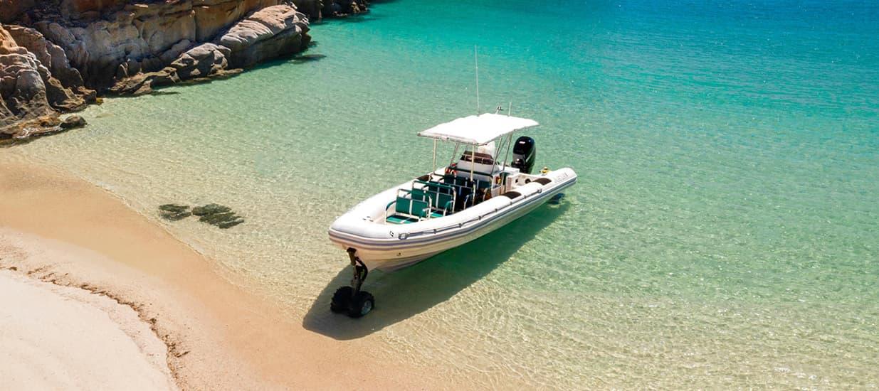 amphibious tour boat