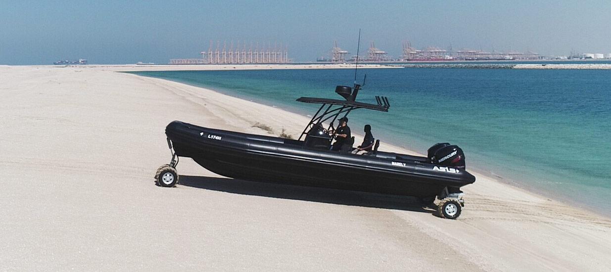 professional-amphibious-boats-9-8-m